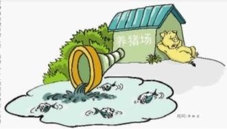湖南张家界桑植县办理首例因养猪排污行政拘留案