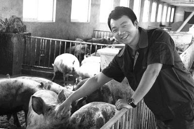 如何控制商品猪出栏成本
