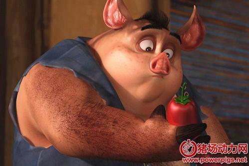 肉猪快速增重的技巧与方法