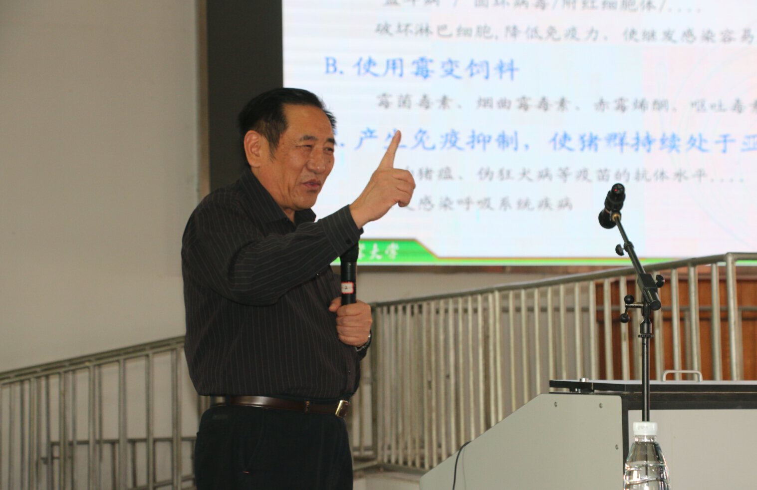 陈焕春:当前猪群疾病的流行现状与防控措施