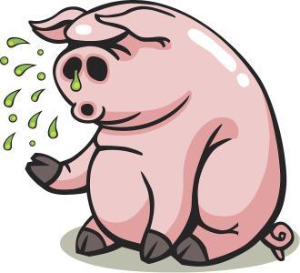 猪流感的原因分析和防治技术方案