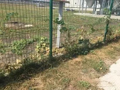 如何防止非瘟进入猪场之一:围墙