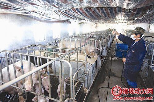猪场细节管理——消毒篇