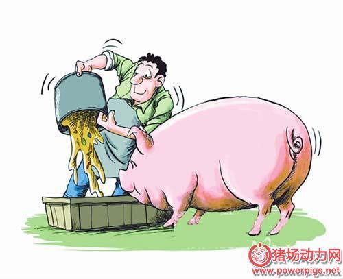 规模化猪场产后母猪的保健护理技术探讨