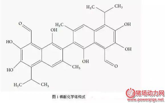 微生物脱毒法降解棉粕游离棉酚是我国研究发现的独特方法!
