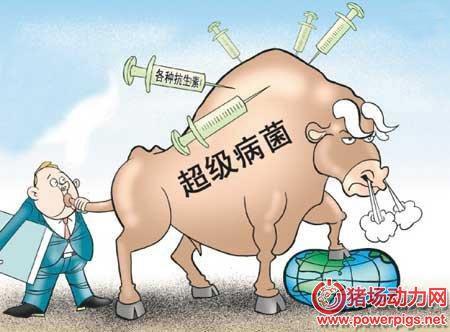 除了霉菌毒素,在畜牧养殖行业中还有那些值得关注的潜在危险毒素呢?