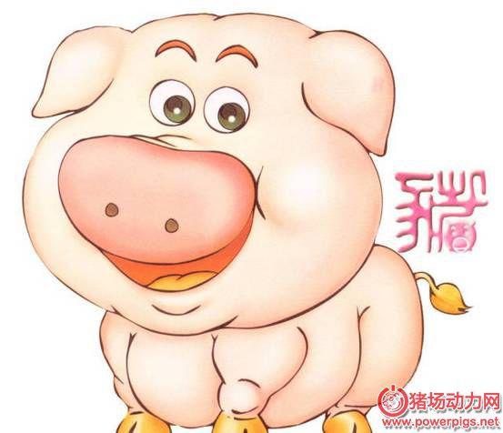 猪猪采食量骤降,3大饲料因素,不可小觑!
