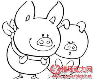 哪些小麦粒度最适于生长猪?