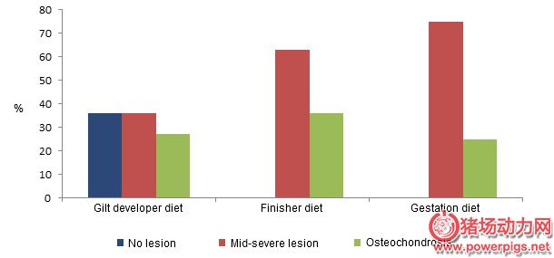 prevalence-of-claw-lesions-in-gilts-depending-on-the-diet-fed-during-their-development_118179.jpg