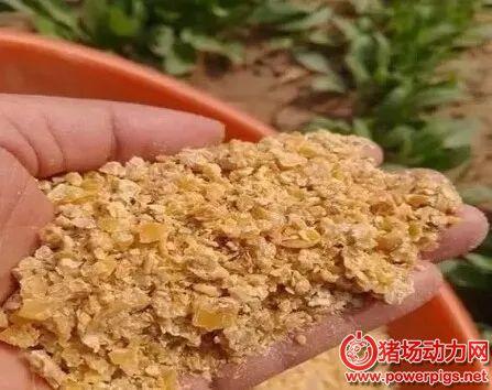 真假豆粕鉴定的4种方法