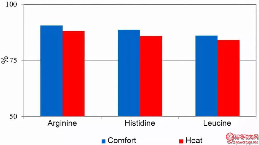 热应激对猪氨基酸消化率的影响