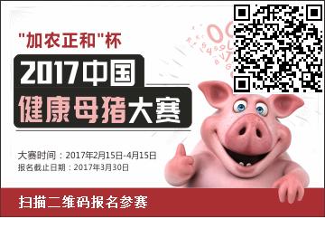 母猪健康大赛报名图.png