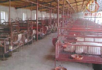 规模化养猪场环境控制技术措施