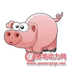 如何面对养猪这种高技术、高成本、高风险的行业?