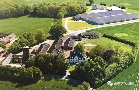 44张高清图,带你走进丹麦高产母猪的家庭农场