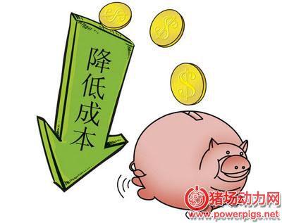养猪也要精打细算,这些钱不能白花