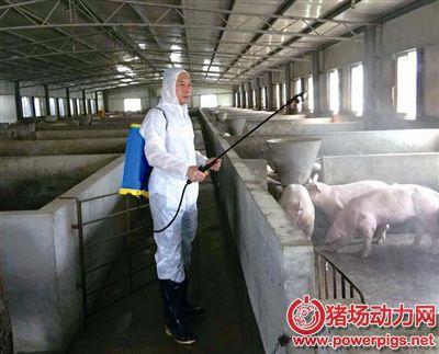 猪场消毒管理存在的问题。