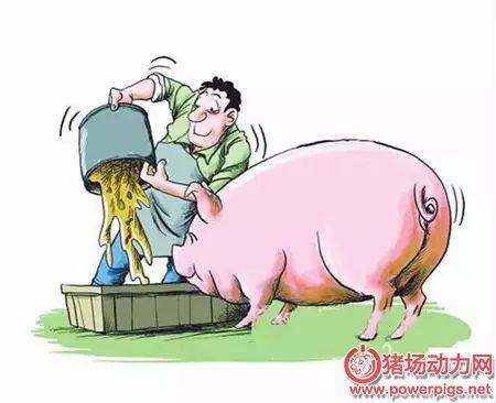 养猪环境控制及要求