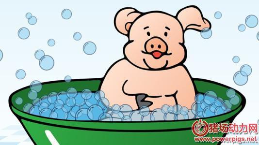 运筹帷幄,教你如何做好猪场降温设施建设