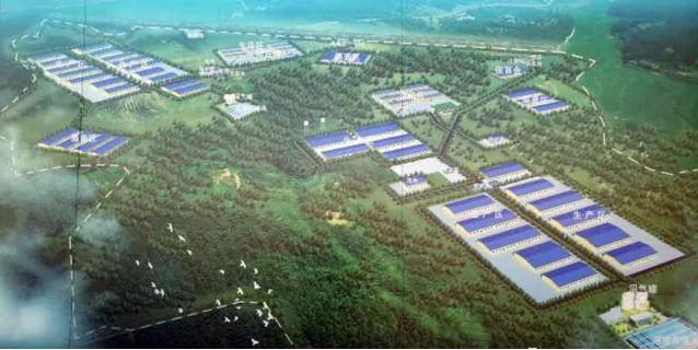 6000头母猪繁殖场的猪舍设计与猪场建设流程与细则
