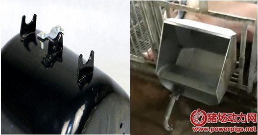 天天清理产房母猪料槽麻烦,试试这个设计