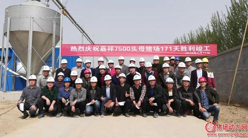 嘉祥7500头母猪场项目171天顺利竣工,见证新希望速度