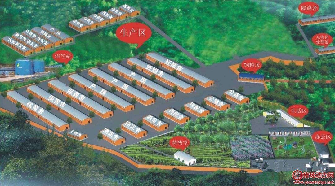 中小养猪场建设存在的问题与解决方法(一)