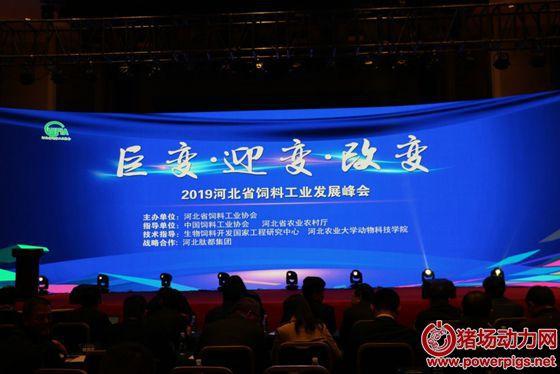 2019河北省饲料工业发展峰会召开,面对巨变勇担当,拥抱变革促发展