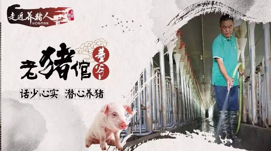 走近养猪人十三期:员工每月接产只要5天,闲到斗地主,这个老板有点牛!