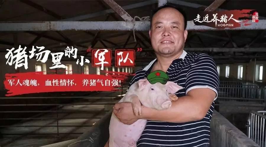 走近养猪人14期:每个月给员工多发1000元工资,一年后他的猪场却扭亏为盈