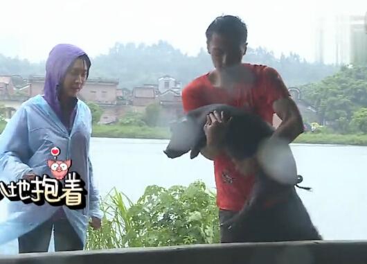 谢霆锋扫猪圈雨中抱猪回家 陈伟霆自嘲比猪笨