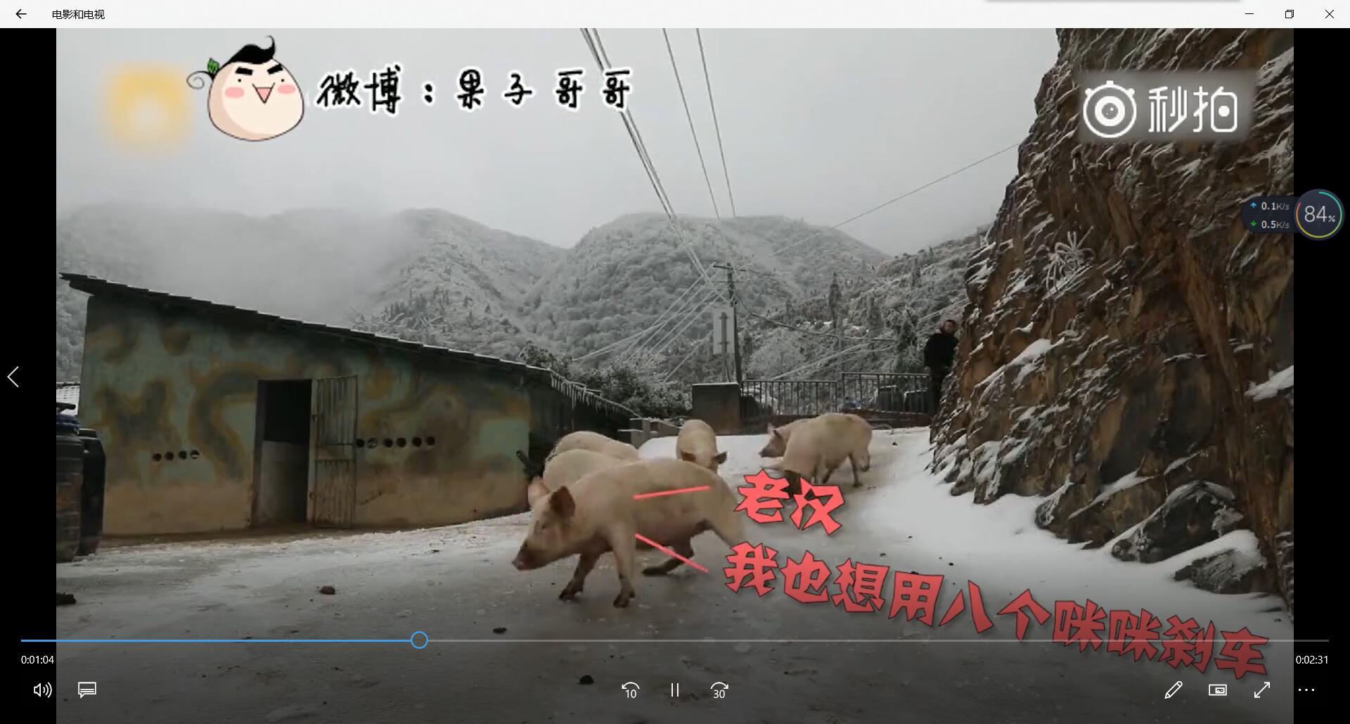 重庆话版小猪佩奇之过年,这配音绝了,笑得停不下来