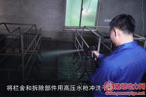 奎哥养猪29期 猪场必须知道的空栏消毒程序,5个步骤一个都不能少!