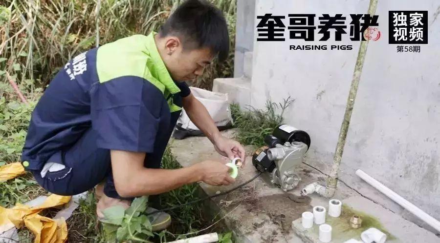 奎哥养猪58期:冲洗猪圈时,发现水压不够怎么办,一个工具就可以搞定!