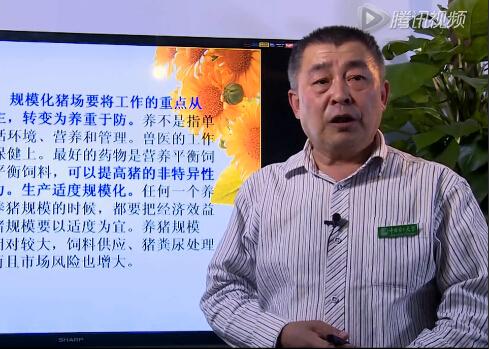 中国农民大学王雍:《目标养猪法》