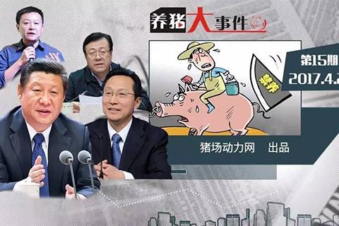 养猪大事件第15期:多位中央部委领导替环保拆迁猪场说话,盲目禁养为何拦不住?