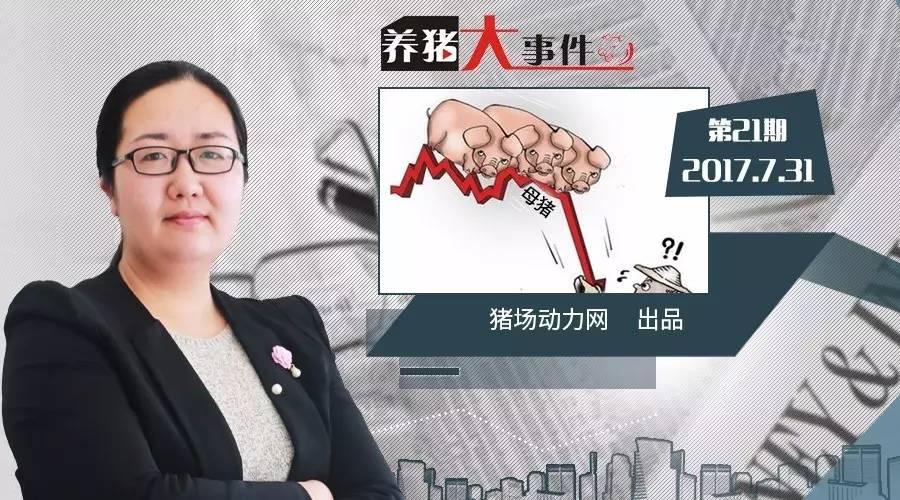 养猪大事件21期:惊!2020年我国只需要3300万头母猪?