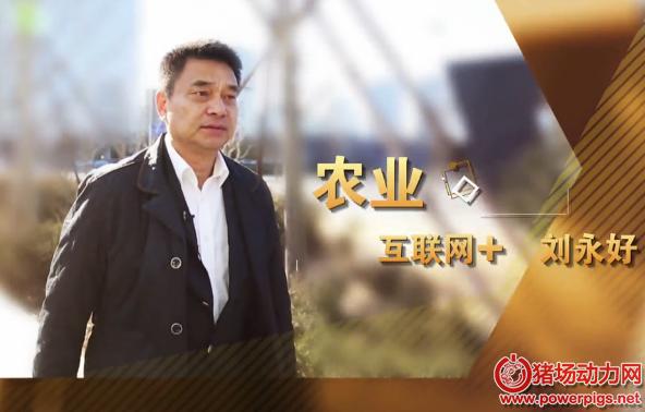 """刘永好:""""猪周期""""影响中国经济进程 下一个风口是农业"""