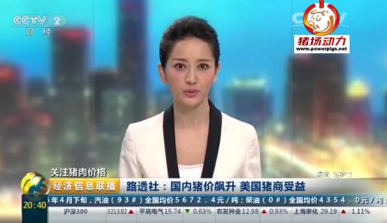 中国猪价飙升,美国猪商受益