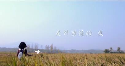 趁着风的方向| 佳和农牧微电影预告片
