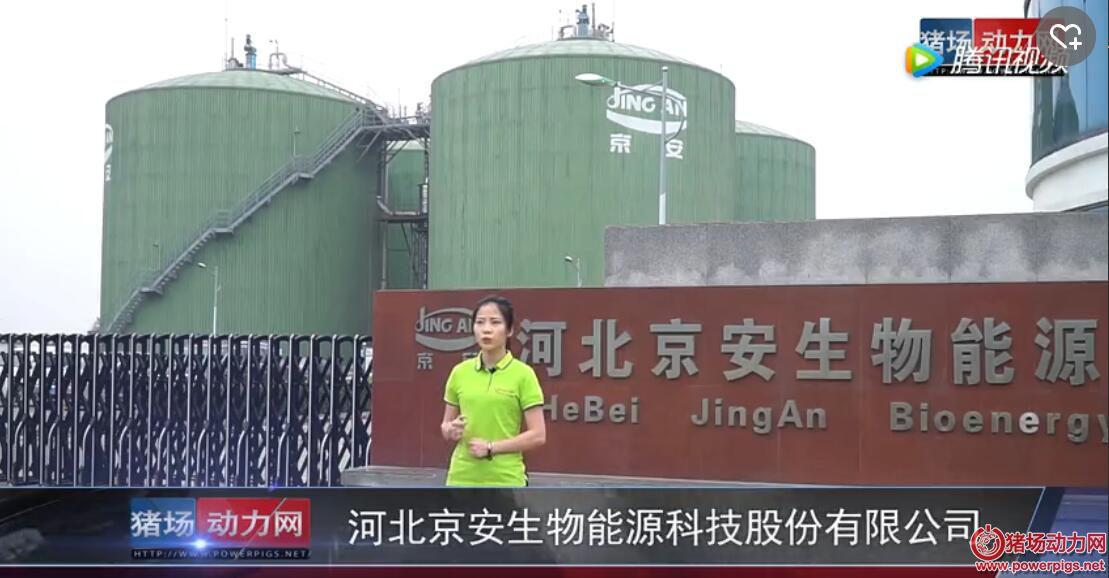 猪场动力网走进河北京安:看畜禽粪污如何变废为宝?