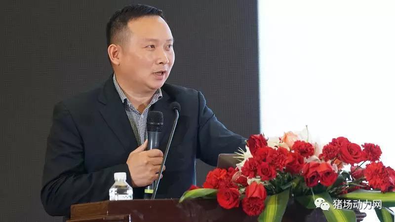 李兴平:专业分工,平台共享(猪场对饲料的误区)