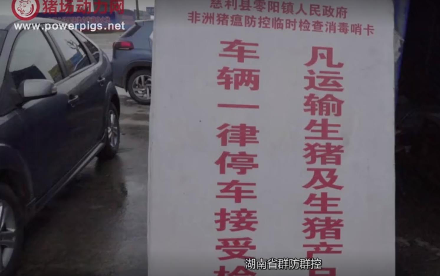 【视频】慈利养猪协会会长被拘10日,什么才是联防联控的正确打开方式?