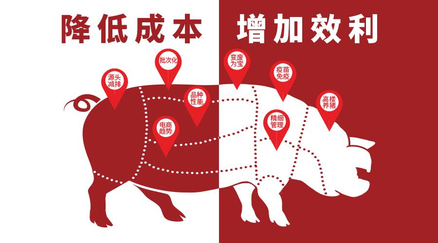 养猪成本的极限在哪?降本途径有哪些?这里能找到答案!