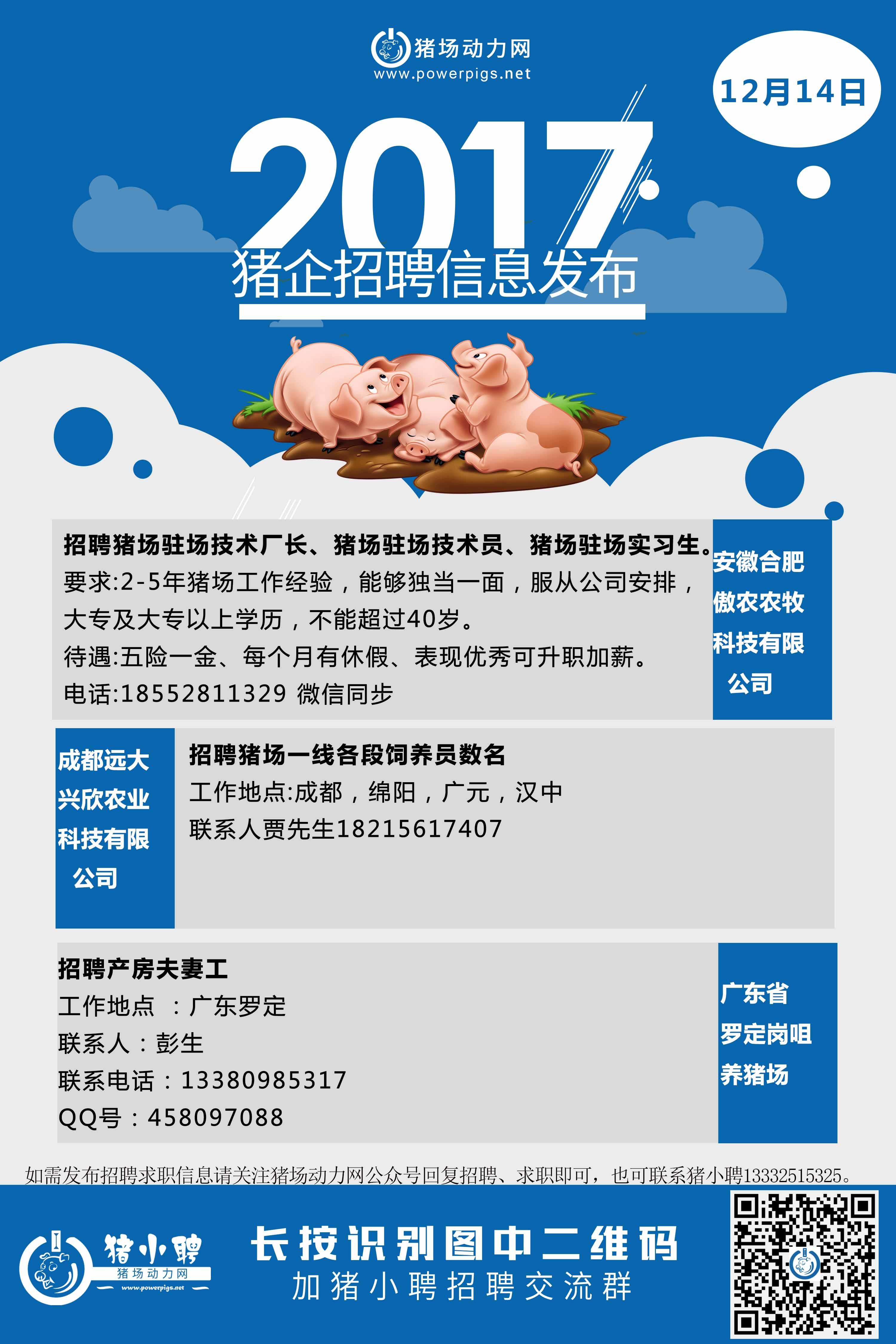 12.14日猪场招聘.jpg