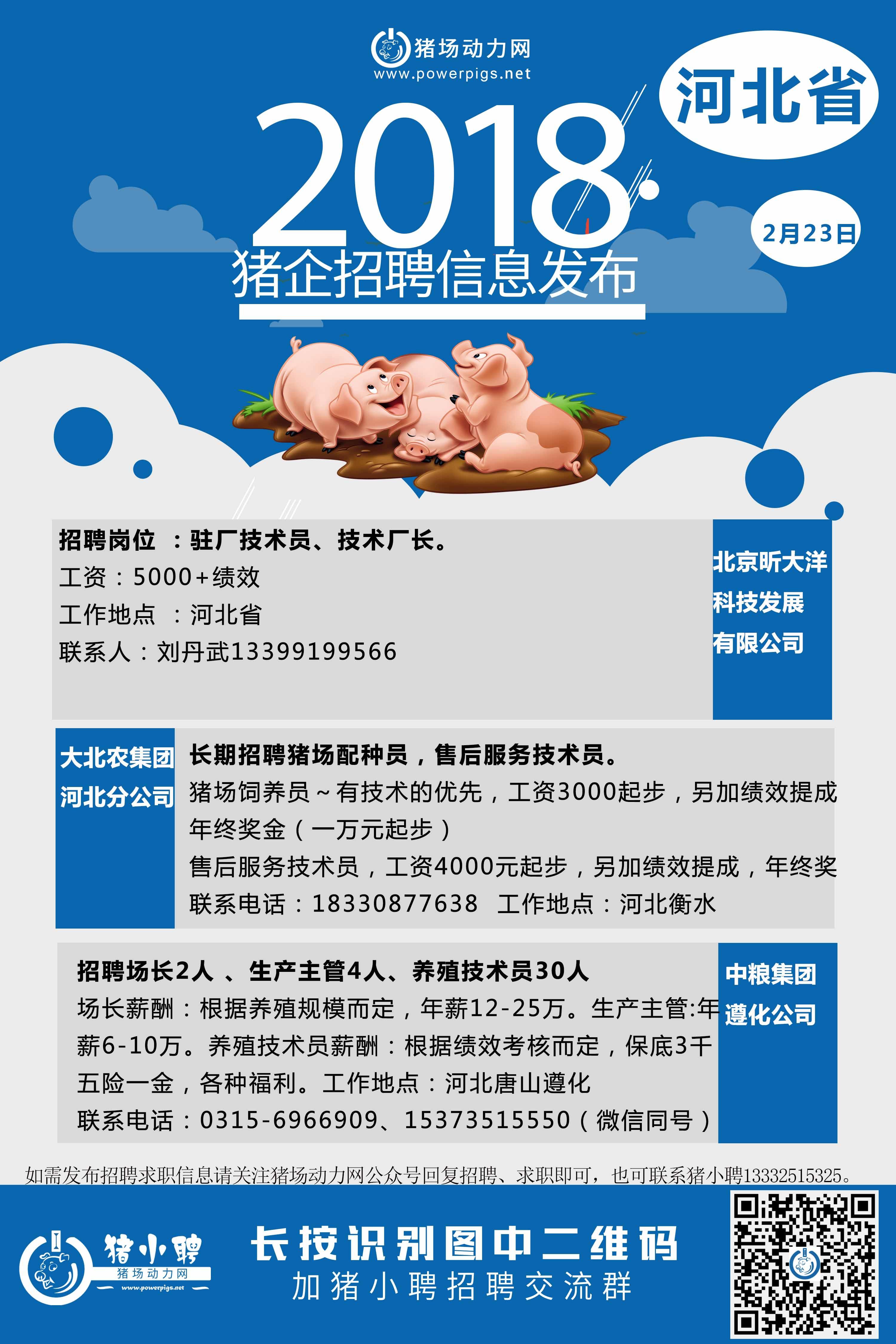 2.23日 河北猪场招聘 1.jpg