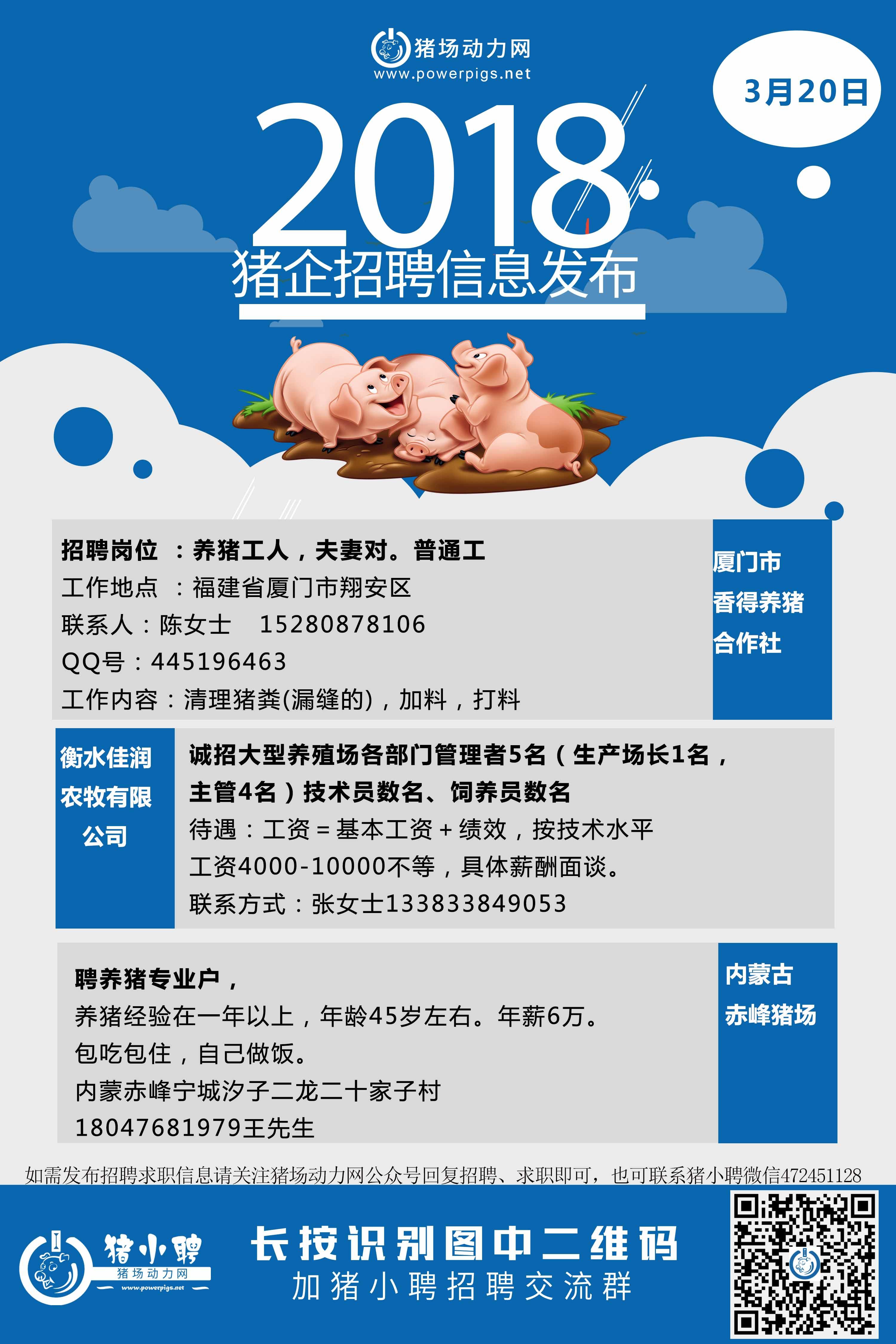 3.20日猪场招聘.jpg