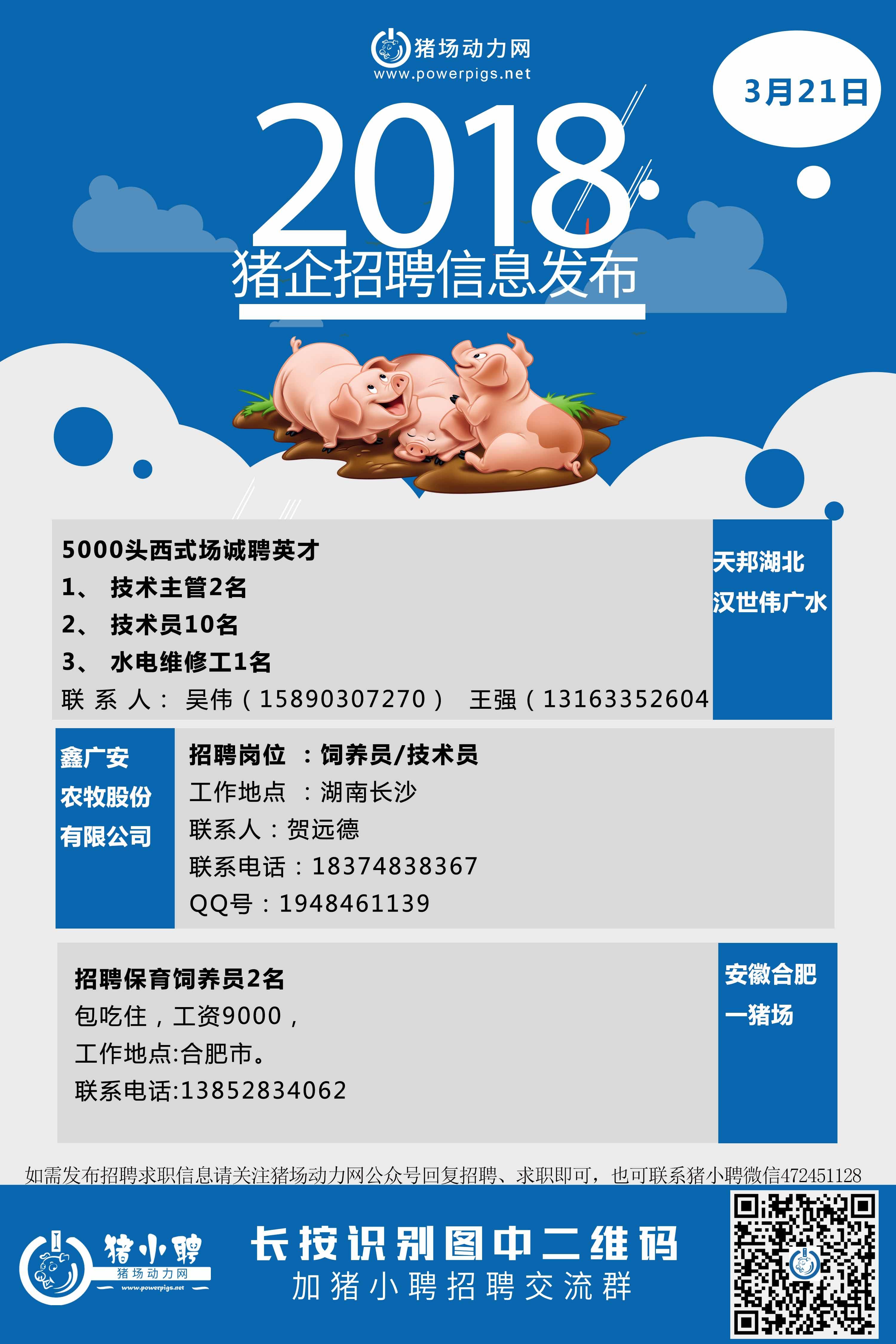 3.21日猪场招聘.jpg