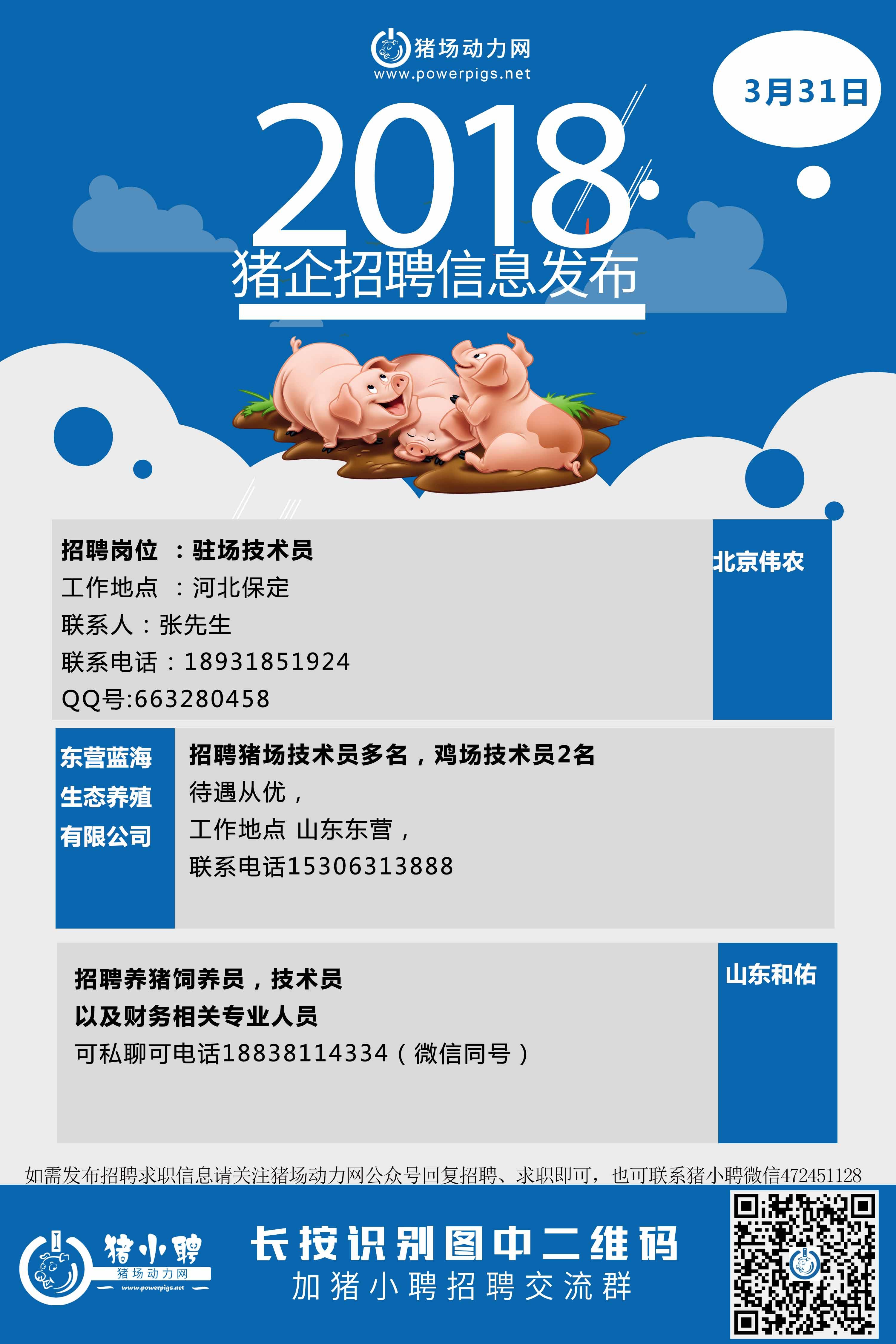 3.31日猪场招聘.jpg