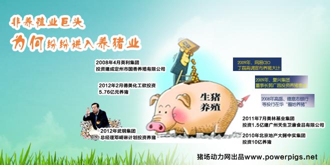 非养殖业巨头为何纷纷进入养猪业